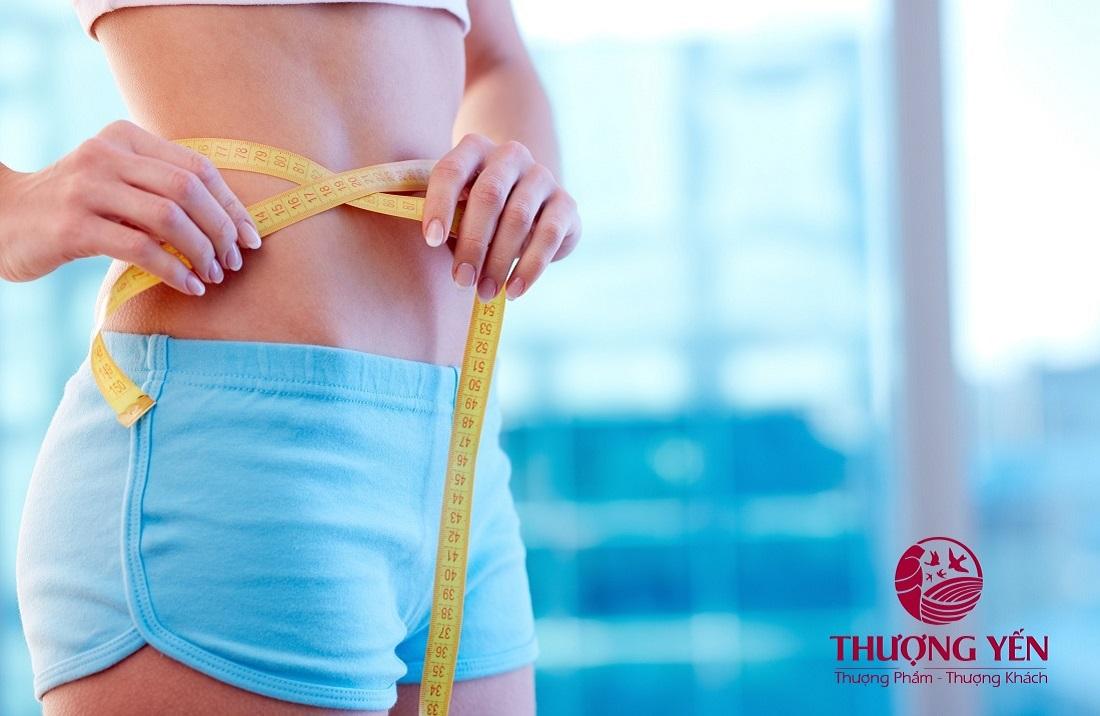 tác dụng giảm cân của yến sào