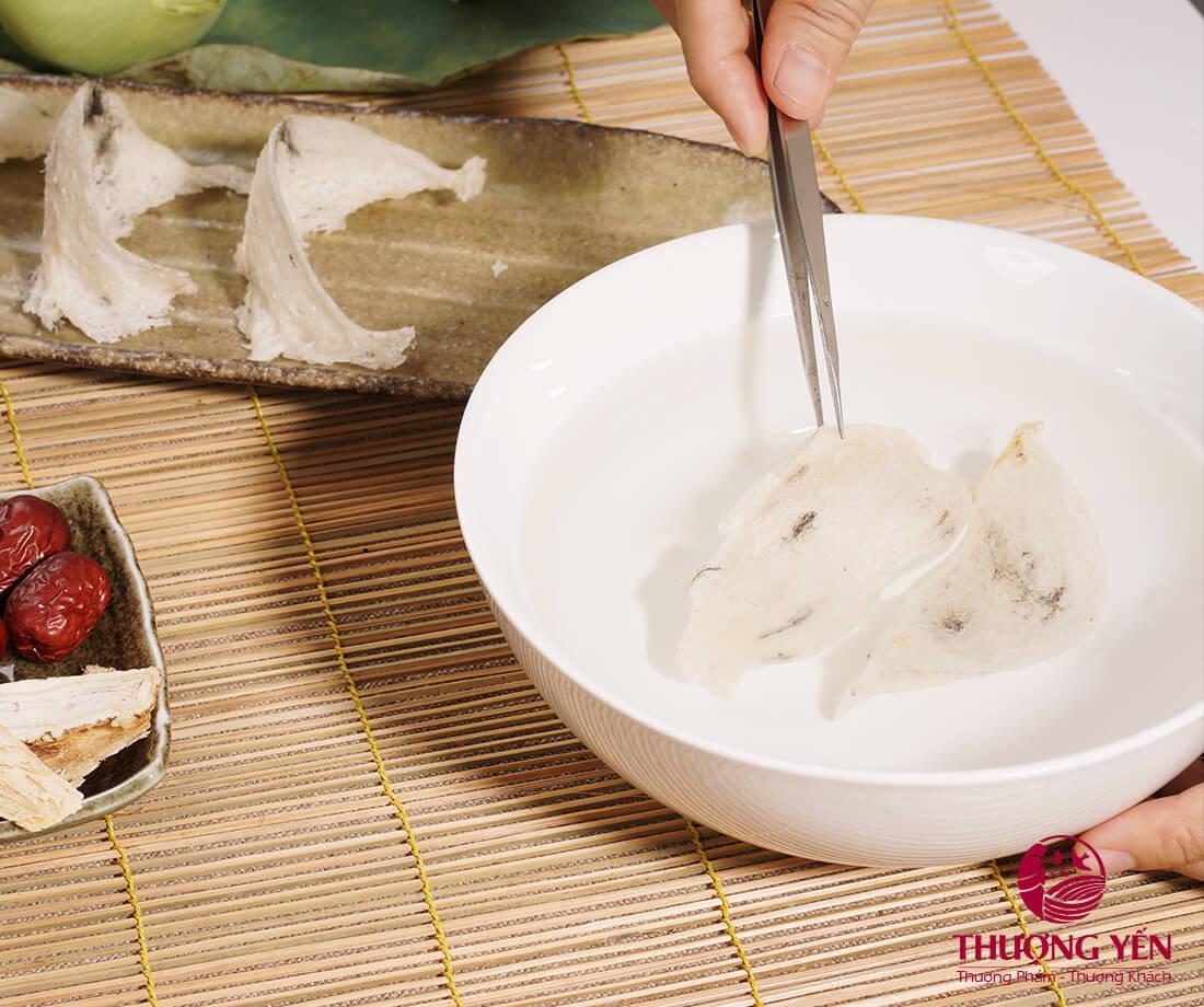 Tổ yến phải được làm sạch lông trước khi chế biến
