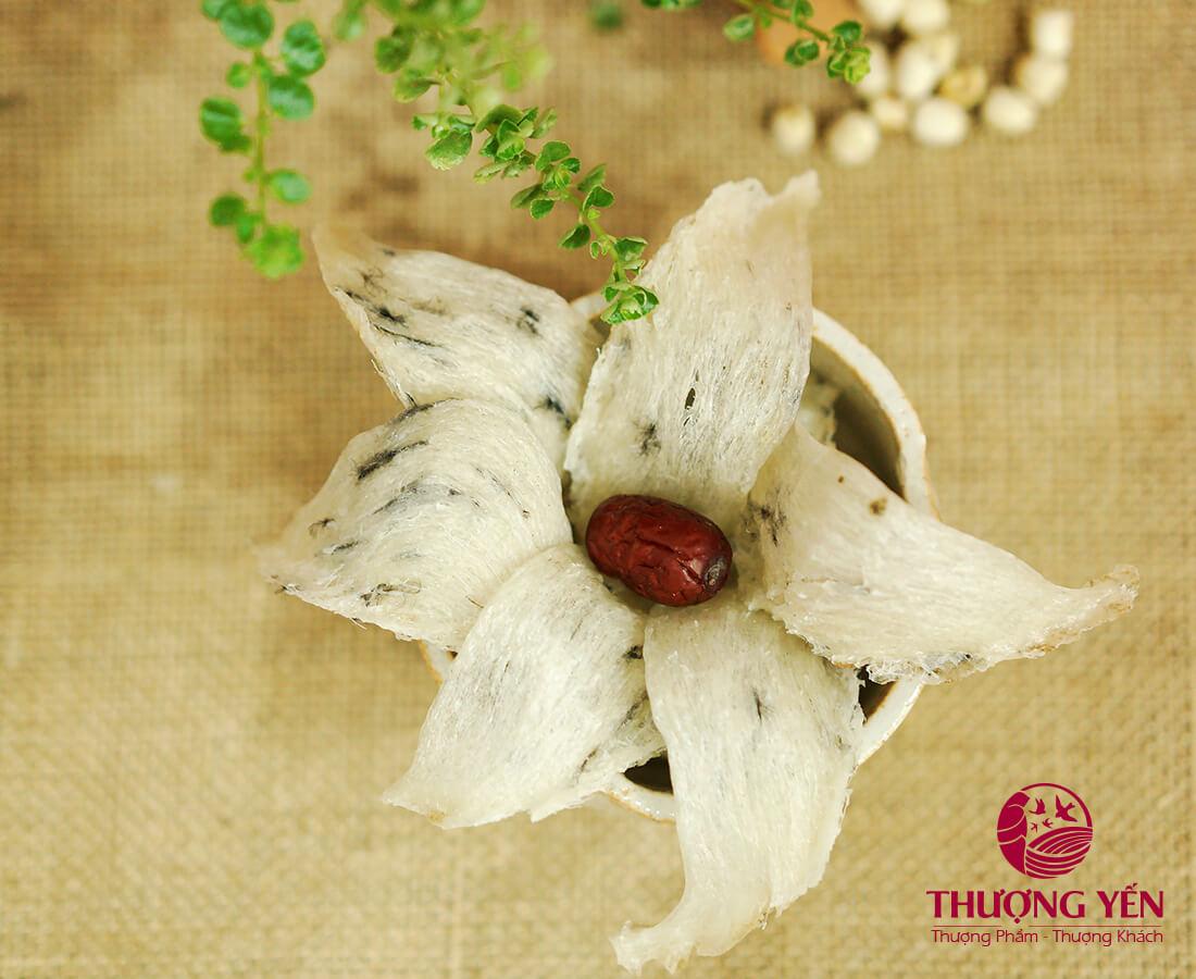Tổ yến thô Thượng Yến được thu hoạch từ hệ thống nhà yến chuyên nghiệp