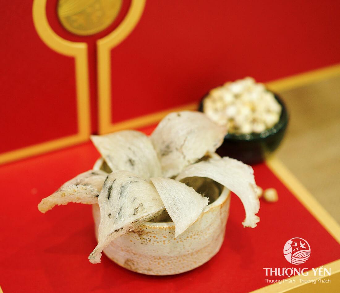 Tổ yến thô Thượng Yến được thu hoạch từ hệ thống nhà yến chuyên nghiệp.