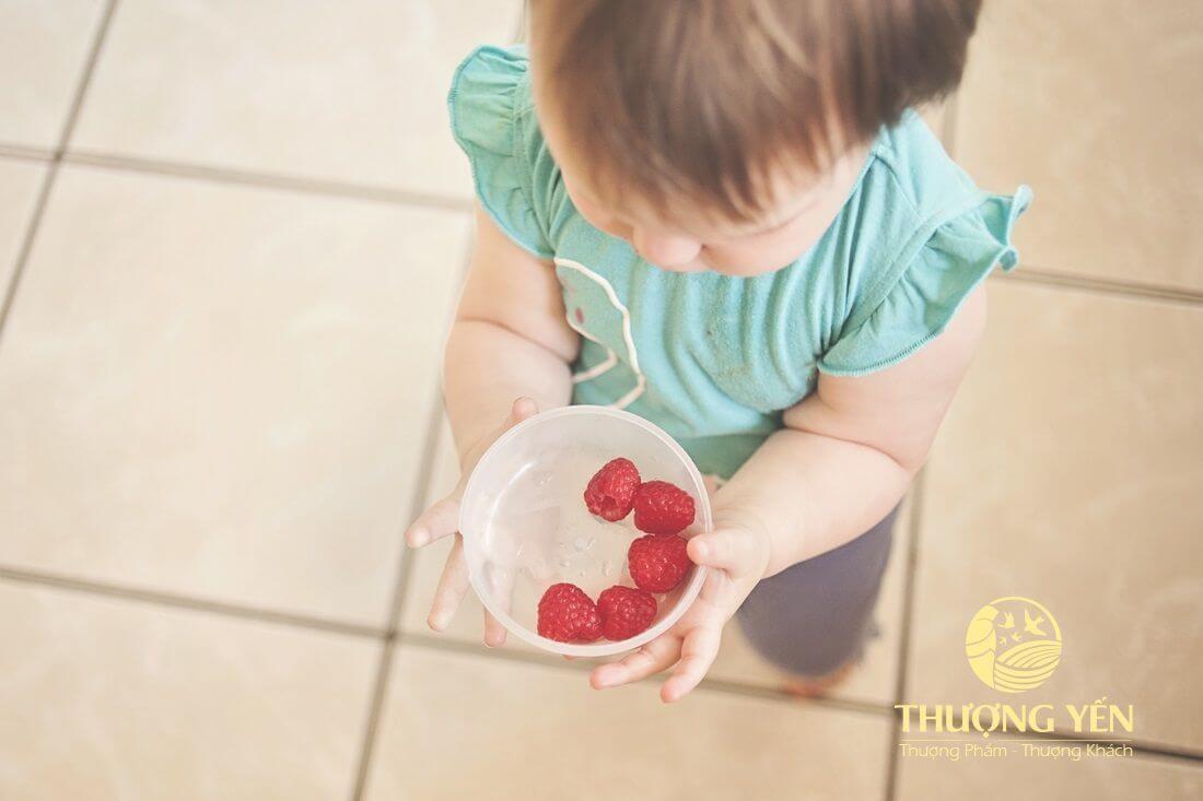 Cách sử dụng yến sào với trẻ em từ 12 tháng tuổi trở lên 1